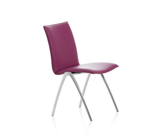 Daniel Figueroa Natello Chair