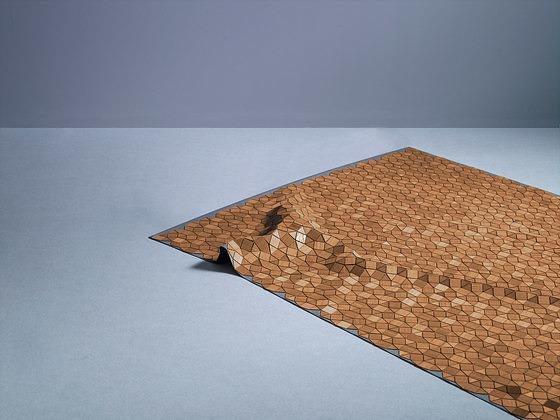 Elisa Strozyk Wooden Carpet