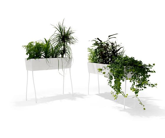Front Green Pedestals