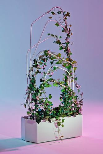 Louise Hederström O2asis – Green Room Divider