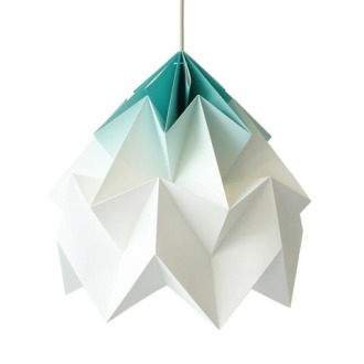 Nellianna Van Den Baard and Kenneth Veenenbos Moth Lamp