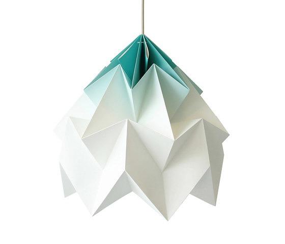 Nellianna Van Den Baard and Kenneth Veenenbos Moth Lamp