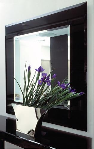 Reflex Elisa Mirror