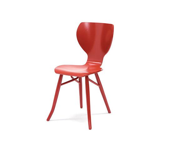 Roderick Vos Tulipani Chair