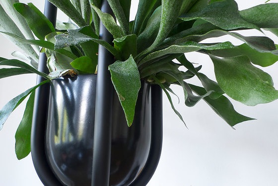 Zascho Petkow and Birgit Severin Blumenampel Hanging Plant Stand