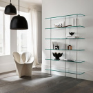 Donato DUrbino and Paolo Lomazzi Trasparenza Bookcase